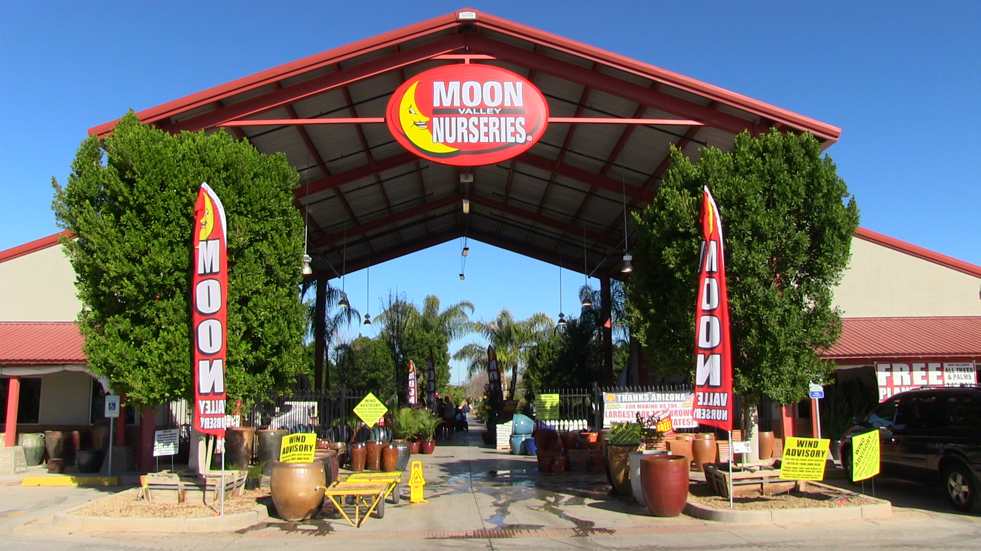 Phoenix Az Tree Amp Plant Nursery Moon